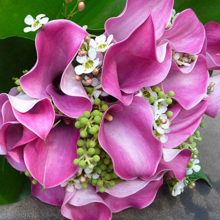 Floral-Design-header